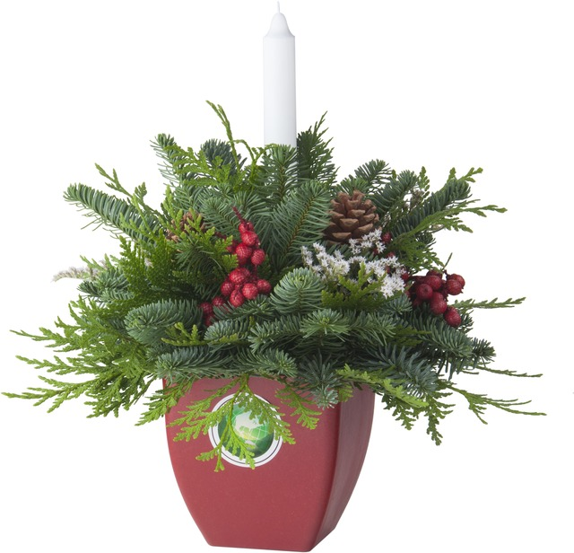 Gogreener Centerpiece W/Candle