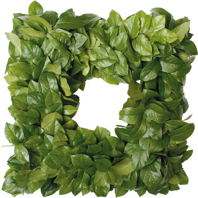 Square Salal Wreath